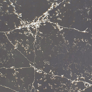 Scintilla Black Artificial Quartz Countertops Suppliers